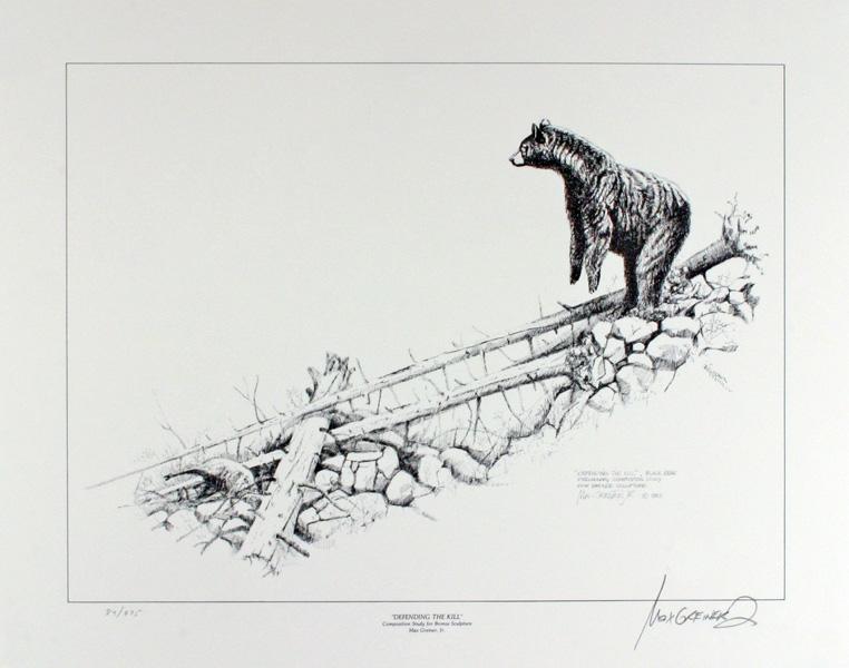 Black bear sketches - photo#27